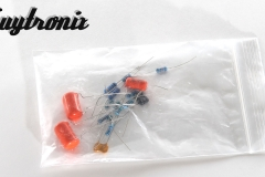 gilmore-jr-kit-capacitors-resistors