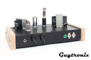 guytronix low watt diy guitar tube amplifier kits guytronix. Black Bedroom Furniture Sets. Home Design Ideas